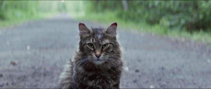 Pet Sematary | Recensione film | Screenshot 7 | Church